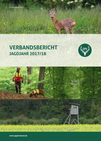 Verbandsbericht 2017/18