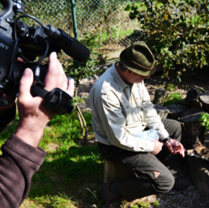 Hans Schindel demonstriert, dass die Füchse der Schliefenanlage zahm und an Hunde gewöhnt sind. (Foto: DJV)