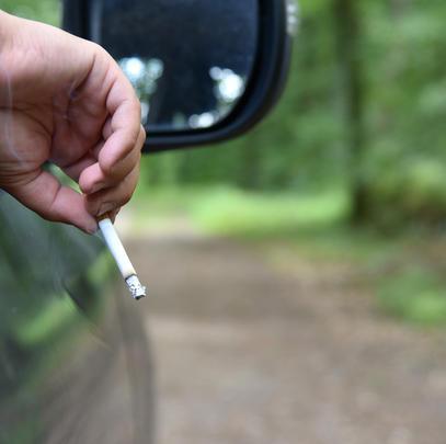 Das Waldbrandrisiko durch Zigaretten ist besonders hoch. (Quelle: Kaufmann/DJV)