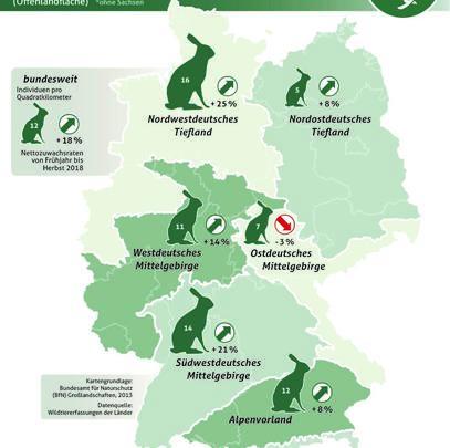 Ergebnisse der Feldhasenzählung im Frühjahr 2018. (Quelle: DJV)