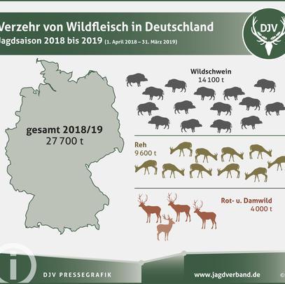 Verzehr von Wildfleisch in Deutschland im Jagdjahr 2018/19 (Quelle: DJV)