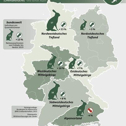 Feldhase-Frühjahrspopulationen und Nettozuwachsraten in den Großlandschaften Deutschlands im Jahr 2019 (Quelle: DJV)