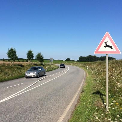 Achtung Wildwechsel: Hier gilt es, besonders umsichtig zu fahren. (Quelle: Kaufmann/DJV)