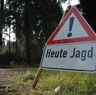 Schilder sollen Spaziergänger auf eine Jagd aufmerksam machen (Quelle: DJV)